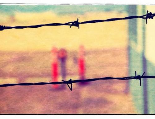 18 décembre : journée internationale des migrant-es