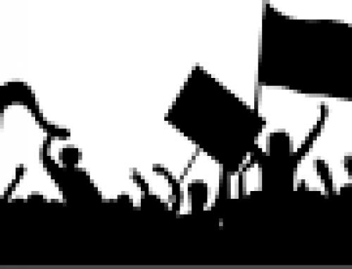 Grève Education 12 novembre