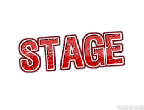 Stage académique SEGPA-EREA-ULIS